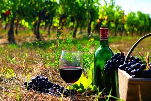 Greece's Leading Wines Return to Australia at the 'Wines of Greece' Roadshow in June